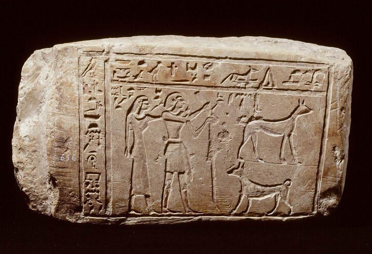 Egyptische familiebanden pop-up tentoonstelling grafsteen honden