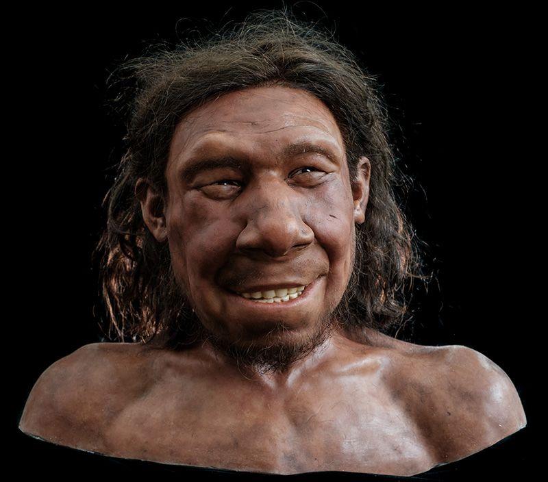 Nederlandse Neanderthaler Krijn